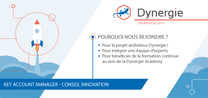 KEY ACCOUNT MANAGER - CONSEIL INNOVATION H/F