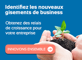 Offre gisement business par l'innovation